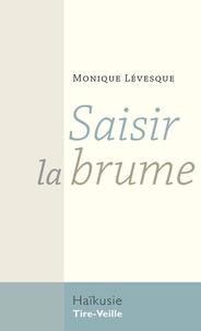 Monique Lévesque - Saisir la brume.
