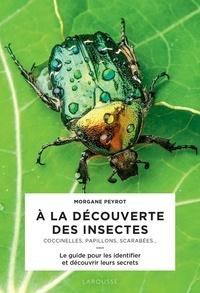 Morgane Peyrot - A la découverte des insectes - Coccinelles, papillons, scarabées....