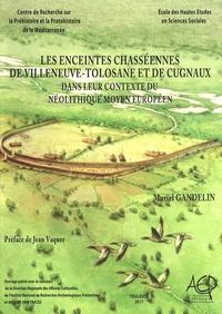 Muriel Gandelin - Les enceintes chasséennes de Villeneuve-Tolosane et de Cugnaux dans leur contexte du Néolithique moyen européen.