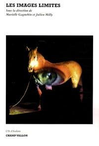 Murielle Gagnebin et Julien Milly - Les images limites.