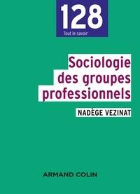 Nadège Vezinat - Sociologie des groupes professionnels.