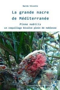 Nardo Vicente - La grande nacre de Méditerranée - Pinna nobilis, un coquillage bivalve plein de noblesse.