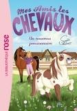 Natacha Godeau - Mes amis les chevaux Tome 1 : Un nouveau pensionnaire.
