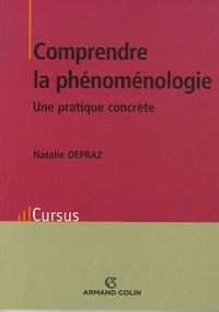 Deedr.fr Comprendre la phénoménologie - Une pratique concrète Image