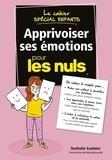 Nathalie Saulnier - Le cahier spécial enfants - Apprivoiser ses émotions pour les nuls.