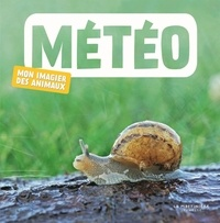 Naturagency - Météo.