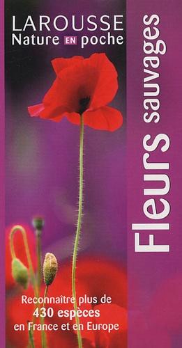 Neil Fletcher - Fleurs sauvages.