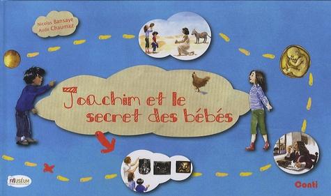 Nicolas Bansaye et Aude Chaumaz - Joachim et le secret des bébés.