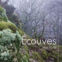 Nicolas Blanchard - Ecouves, ma forêt.