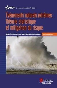 Evénements naturels extrêmes : théorie statistique et mitigation du risque - Nicolas Bousquet pdf epub
