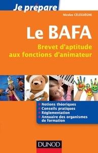 Nicolas Céléguègne - Je prépare le BAFA - Brevet d'aptitude aux fonctions d'animateur.