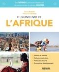 Nicolas Normand - Le grand livre de l'Afrique - Chaos ou émergence au sud du Sahara ?.
