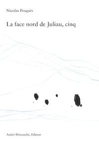 Nicolas Pesquès - La face nord de Juliau, cinq.