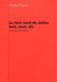 Nicolas Pesquès - La face Nord de Juliau huit, neuf, dix.