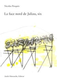 Nicolas Pesquès - La face nord de Juliau, six - Surjaune, poème installé.