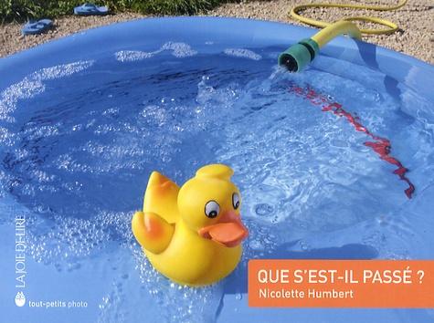 Nicolette Humbert - Que s'est-il passé ?.