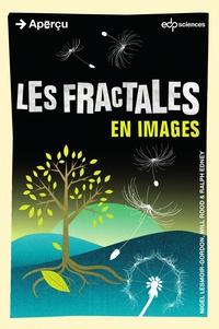 Deedr.fr Les fractales Image