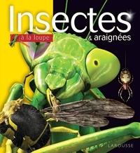 Insectes & araignées.pdf