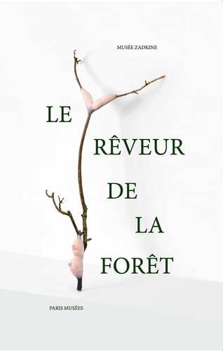 Le rêveur de la forêt