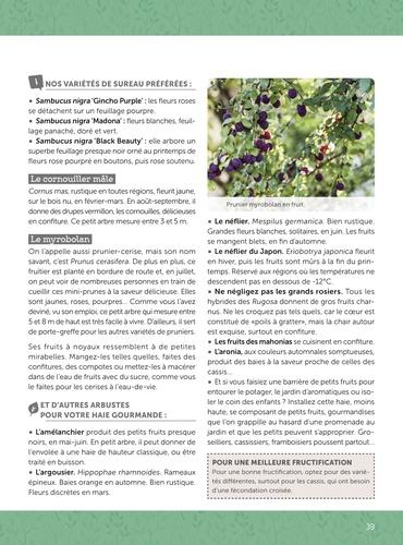 Jardiner sans effort. Tous les conseils et variétés à adopter pour un jardin (presque) sans entretien