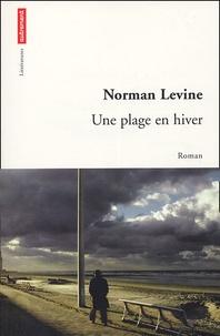 Norman Levine - Une plage en hiver.
