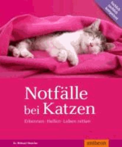 Notfälle bei Katzen - Erkennen Helfen Leben retten.