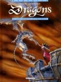Novi Contremarche et Joël Mouclier - Dragons Tome 1 : Les jouets olympiques.