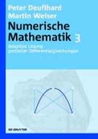 Numerische Mathematik 3. Adaptive Lösung partieller Differentialgleichungen.