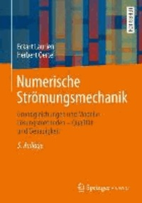 Numerische Strömungsmechanik - Grundgleichungen und Modelle - Lösungsmethoden - Qualität und Genauigkeit.