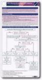 NVL Nierenerkrankungen bei Diabetes pocketcard Set Kitteltaschenversion.