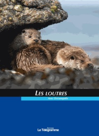 Océanopolis - Les loutres.