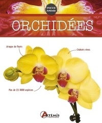 Orchidées - Odile Koenig |