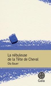 Ola Bauer - La nébuleuse de la Tête de Cheval.