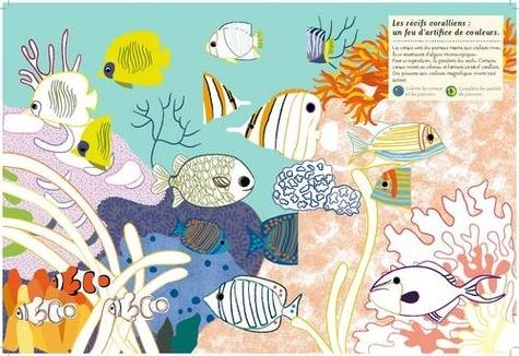 Dans les océans