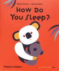 Olivia Cosneau et Bernard Duisit - How Do You Sleep?.