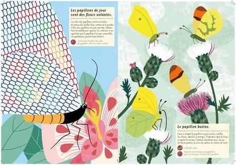 Les papillons du monde