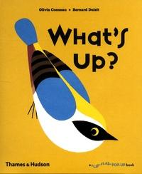 Olivia Cosneau et Bernard Duisit - What's up?.