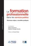 Olivier Bachelard et Delphine Espagno-Abadie - La formation professionnelle dans les services publics - Nouveaux enjeux, nouvelles pratiques.