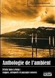 Olivier Bernard - Anthologie de l'ambient - D'Erik Satie à Moby : nappes, aéroports et paysages sonores.