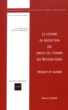 Olivier de Frouville - Le système de protection des droits de l'homme des Nations Unies - Présent et avenir.