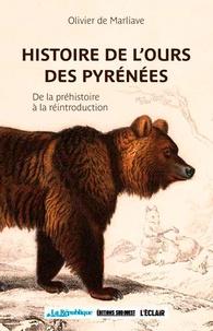 Satt2018.fr Histoire de l'ours des Pyrénées - De la préhistoire à la réintroduction Image