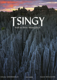 Olivier Grunewald et David Wolozan - Tsingy - Forêt de Pierre - Madagascar.