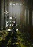 Olivier Herson - Ces fêlures par où passe la lumière.