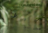 Olivier Laporte - Voyage en Caloptérie.