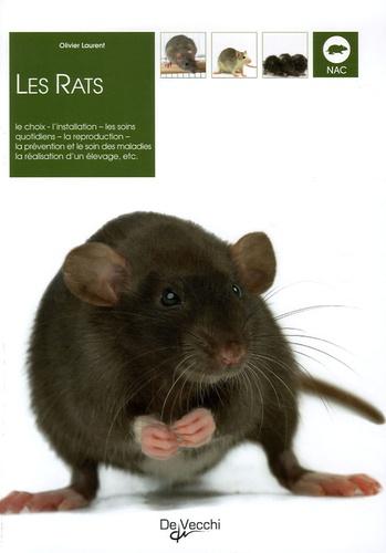 Olivier Laurent - Les rats.