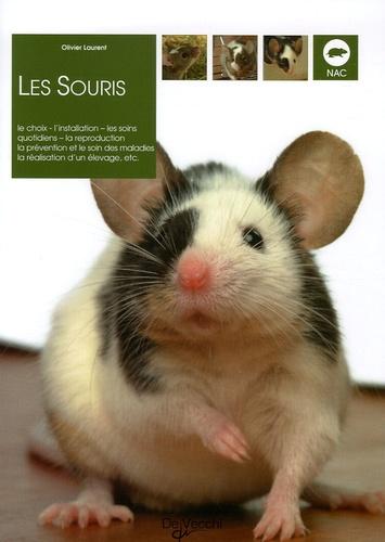 Olivier Laurent - Les souris.