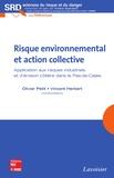 Olivier Petit et Vincent Herbert - Risque environnemental et action collective - Application aux risques industriels et d'érosion côtière dans le Pas-de-Calais.