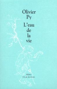 Olivier Py - L'eau de la vie - [Orléans, CDN Orléans-Loiret-Centre, 26 mai 1999.