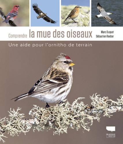 Comprendre la mue des oiseaux  : Une aide pour l'ornitho de terrain
