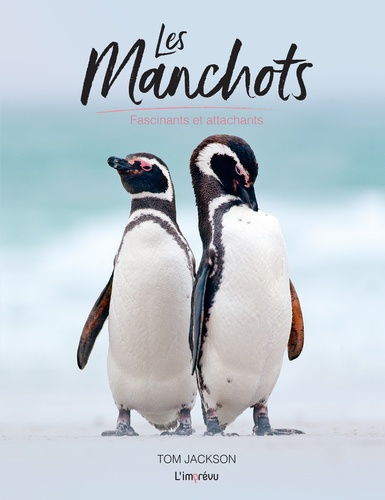Les manchots  : Fascinants et attachants